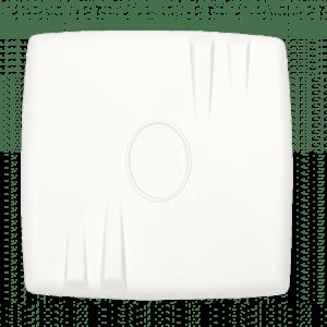Wireless customer terminal WB-1P-LR